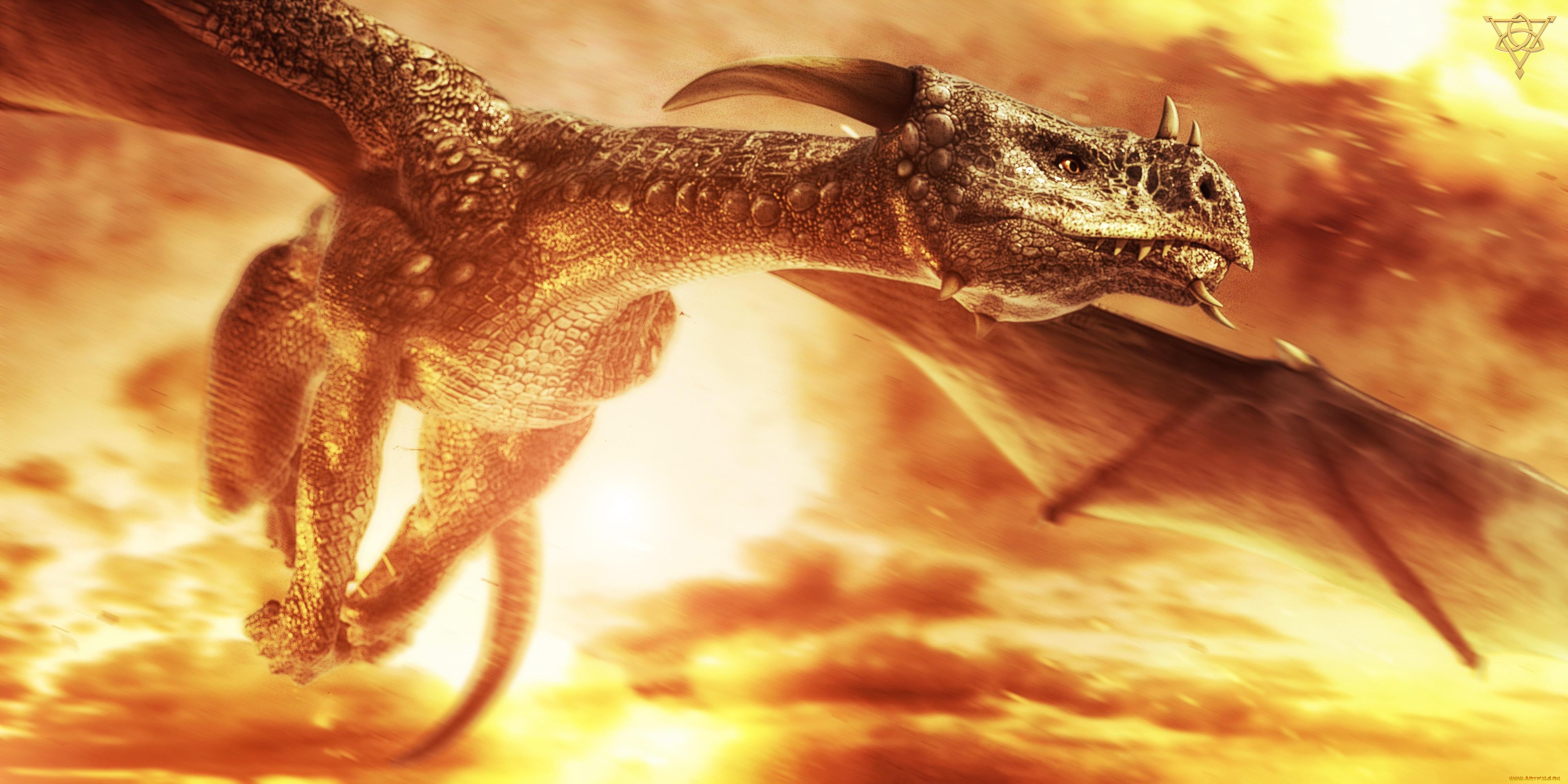 драконы на рабочий стол в высоком разрешении